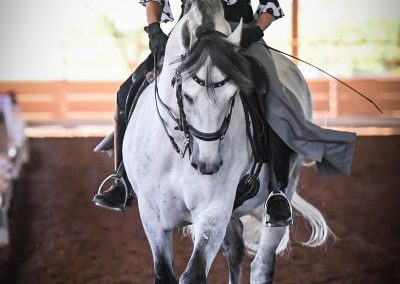 El Samaritano Equestrian Center located in Scottsdale AZ 206 604 3034 (2)