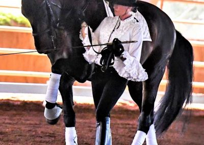 El Samaritano Equestrian Center located in Scottsdale AZ (5)